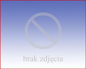 Tygiel ZB100D